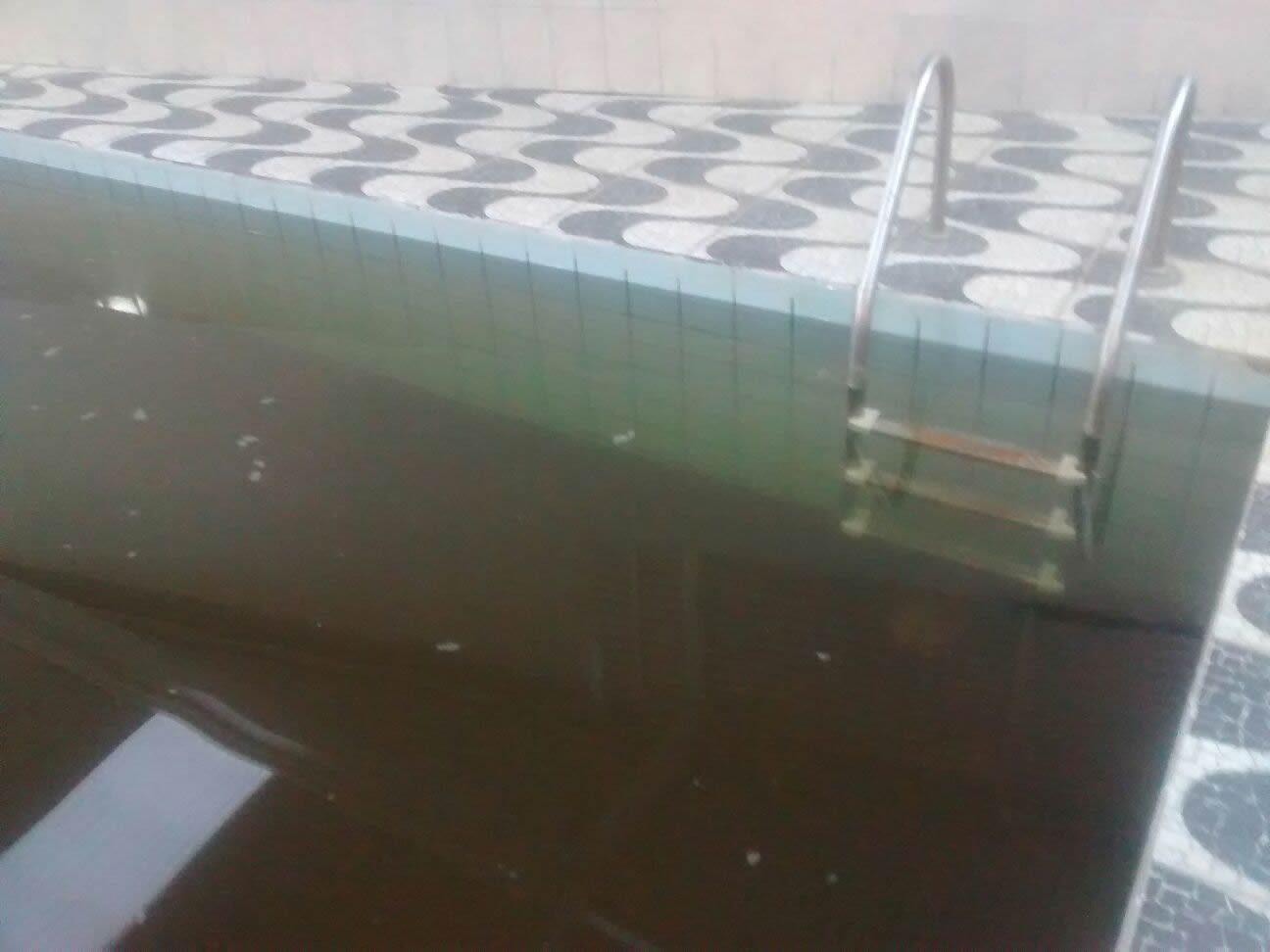 O que fazer com a gua da piscina marrom for Piscina que pierde agua