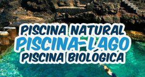 Piscina lago, Piscina natural ou piscina biológica